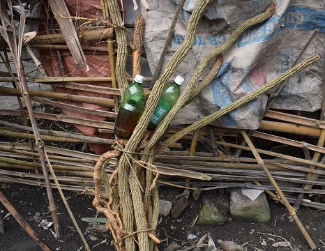 Uống rượu ngâm rễ cây rừng, 2 người ở Bắc Kạn tử vong