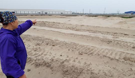Hưng Yên: Doanh nghiệp ngang nhiên san lấp dù chưa đền bù