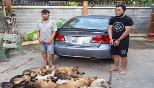 Hai đối tượng trộm chó dùng súng bắn điện, bột ớt chống trả Công an