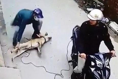 Truy đuổi trộm chó, người đàn ông tử vong