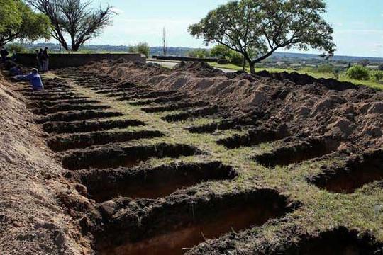 Thành phố ở Argentina đào hàng trăm ngôi mộ giữa đại dịch dù số người nhiễm mới đang giảm