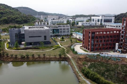 Những điều cần biết về phòng thí nghiệm Vũ Hán - trung tâm tranh cãi giữa Trung Quốc và Mỹ