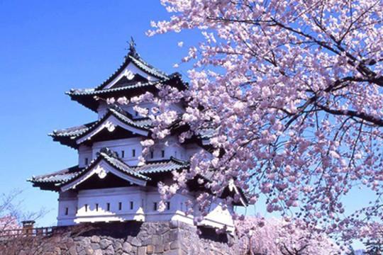 Du học sinh tại Nhật Bản được kéo dài thời gian cư trú
