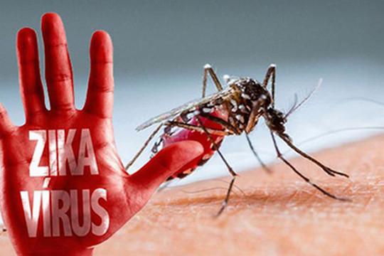 Phát hiện ca bệnh do virus Zika tại Đà Nẵng