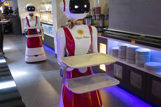 Robot phục vụ thực khách tại nhà hàng ở Hà Lan