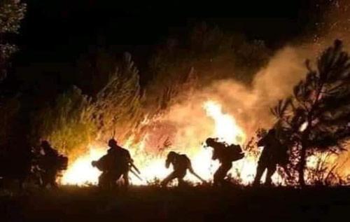Nghệ An: Đám cháy rừng kéo dài 3 ngày được dập tắt hoàn toàn