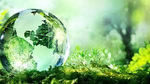 Lấp khoảng trống pháp lý về bảo vệ môi trường