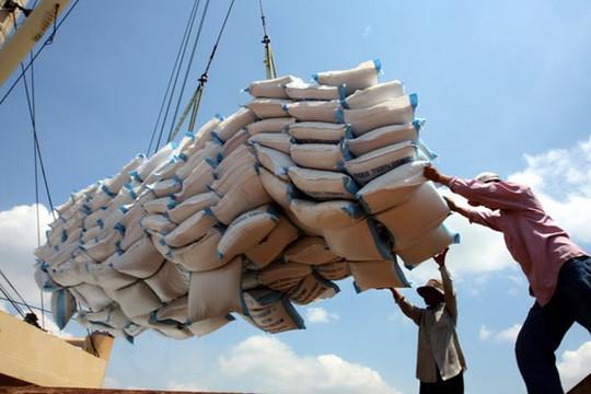 Giá gạo Việt xuất khẩu vươn lên dẫn đầu thế giới