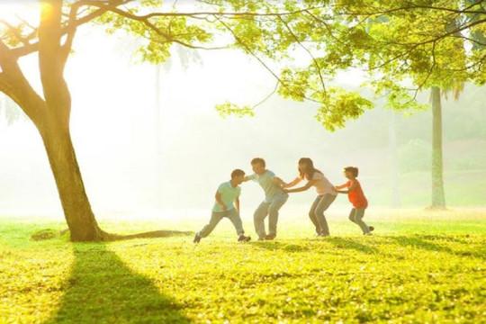 Bí quyết tận hưởng giá trị sống tiện nghi giữa miền xanh sinh thái