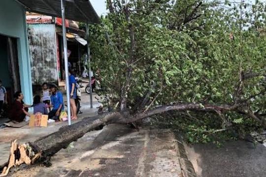 Quảng Bình: Hai người bị thương nặng do ảnh hưởng của bão số 5