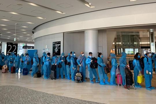 Thêm chuyến bay đưa hơn 350 công dân Việt Nam từ Nhật Bản về nước