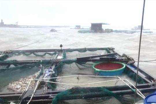 Đảo Lý Sơn đang có gió giật mạnh, biển động dữ dội