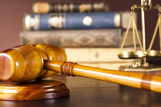 Văn kiện cần có sự phân định rõ hơn vị trí, vai trò của từng thiết chế tư pháp