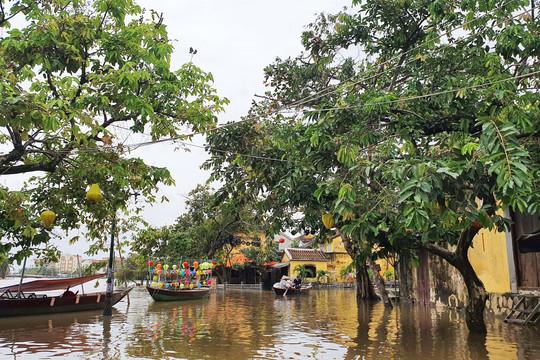 Sau những ngày mưa lớn, phố cổ Hội An lại chìm trong biển nước