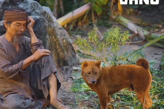 Cậu Vàng - Chú chó đảm nhận vai chính đầu tiên trên phim điện ảnh Việt Nam