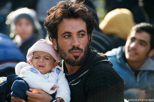Phá vỡ đường dây đưa người Syria nhập cư trái phép vào Đức