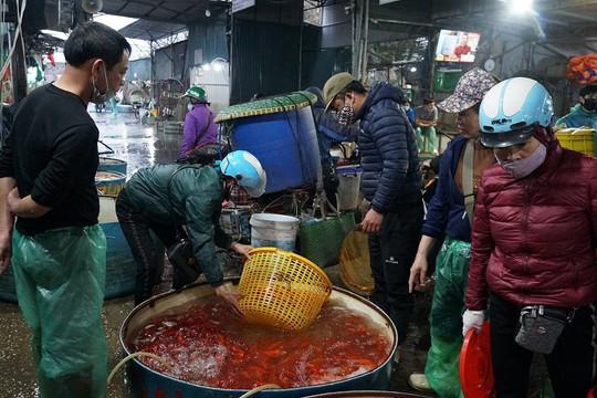 Tấp nập chợ cá trước ngày tiễn ông Công ông Táo