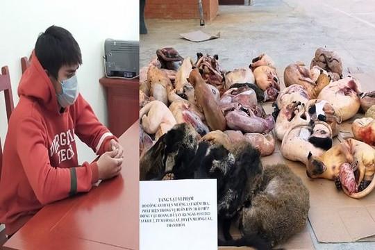 Bắt vụ tàng trữ hơn 200kg động vật hoang dã