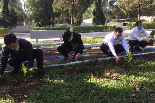 TAND tỉnh Gia Lai tổ chức trồng cây đầu Xuân Tân Sửu