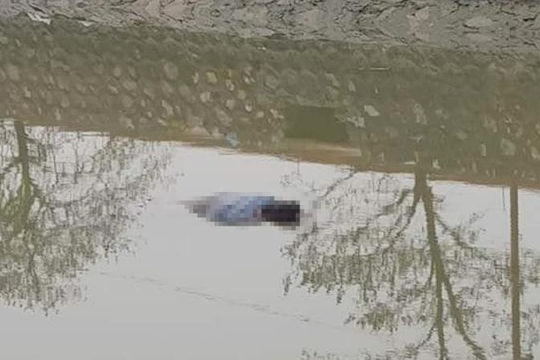 Phát hiện thi thể trôi dạt vào bờ sông ở Nam Định