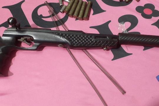 Truy tố 12 bị can trong đường dây mua bán trái phép ma túy và vũ khí quân dụng liên tỉnh