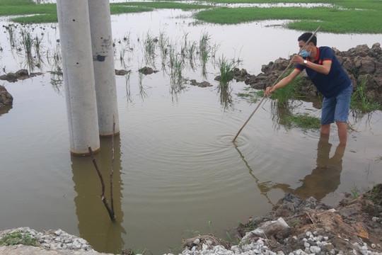 Vụ 2 cháu bé đuối nước dưới chân cột điện: Công ty Điện lực Thanh Hóa nhận thiếu sót khi cung cấp thông tin