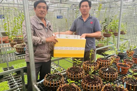 Làm giàu với thú vui tao nhã từ việc trồng lan của         nghệ nhân         Nguyễn Ngọc Vương