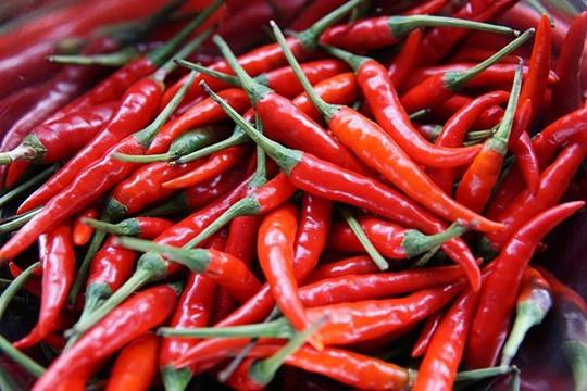 Thực hư về việc Trung Quốc cấm nhập khẩu ớt của Việt Nam