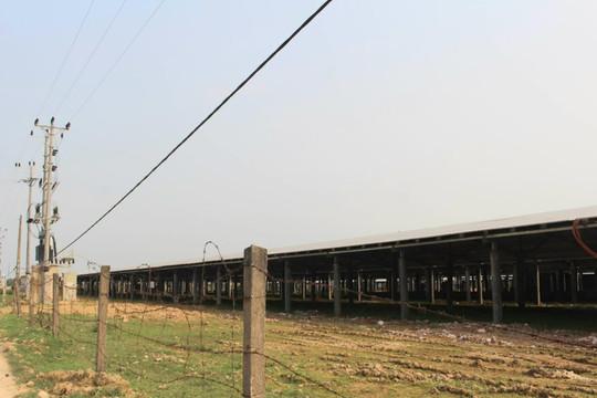 Núp bóng dự án trang trại điện mặt trời: Bị xử phạt, chủ đầu tư vẫn hoàn thiện công trình