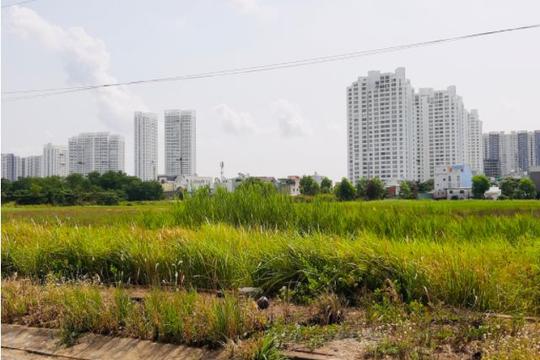 TP.HCM xác định lại hệ số điều chỉnh giá đất nông nghiệp