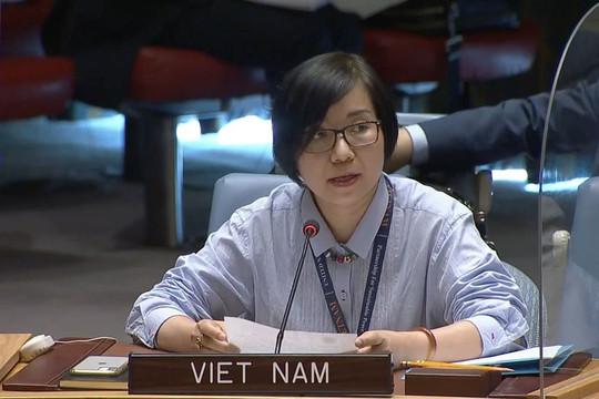 Việt Nam ủng hộ chống phổ biến và giải trừ vũ khí huỷ diệt hàng loạt