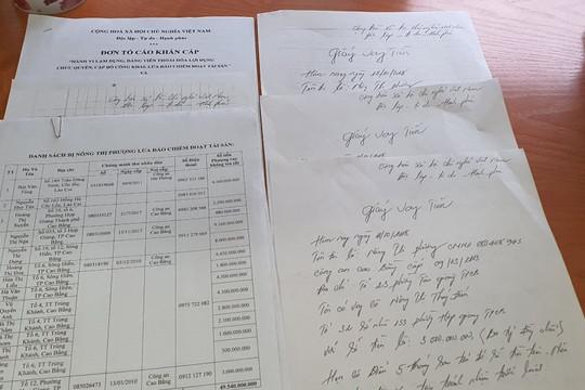 Cơ quan điều tra tiếp nhận nhiều đơn tố cáo Nông Thị Phượng có hành vi lừa đảo