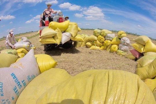 Giải quyết điểm nghẽn  cho vận chuyển, tiêu thụ nông sản giữa dịch Covid-19