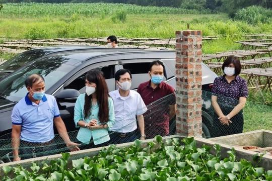 Phó Chủ tịch UBND tỉnh Lạng Sơn kiểm tra tình hình thực hiện phát triển kinh tế tập thể, hợp tác xã tại huyện Cao Lộc