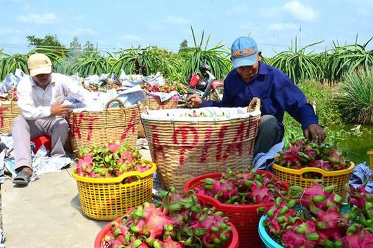 Nhiều cơ hội để đẩy mạnh xuất khẩu nông sản sang thị trường châu Âu
