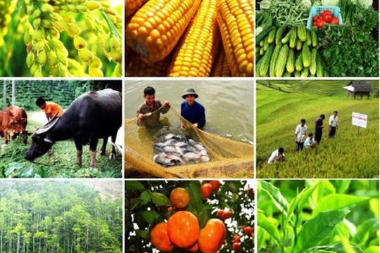 Kết nối cung – cầu tiêu thụ nông sản cho nông dân trong đại dịch Covid-19