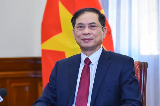 Bộ trưởng Bùi Thanh Sơn: Cộng đồng người Việt Nam ở nước ngoài là một bộ phận không tách rời