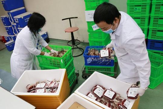 Thêm 2.000 đơn vị máu chi viện TP.HCM