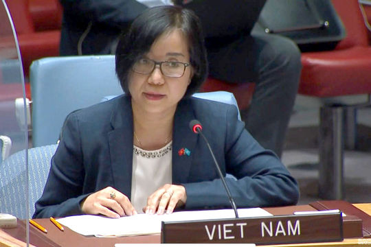 Việt Nam đề nghị cộng đồng quốc tế, HĐBA LHQ ủng hộ Ethiopia vượt qua khó khăn