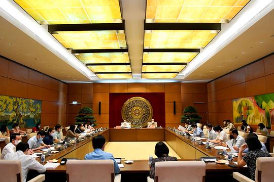 Ủy ban Pháp luật thẩm tra Báo cáo của Chính phủ về thi hành Hiến pháp