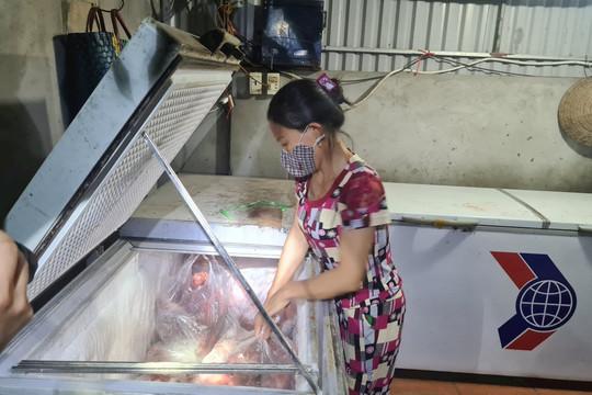 Xử phạt hành chính cơ sở chứa thịt lợn mang mầm bệnh