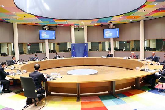Chủ tịch Quốc hội đề nghị Hội đồng châu Âu ủng hộ hợp tác sản xuất vaccine tại Việt Nam
