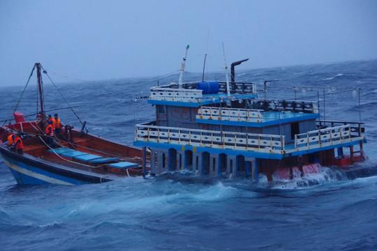 Cảnh sát biển xuyên bão cứu hộ hai tàu bị nạn