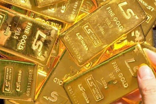 Giá vàng hôm nay 13/9: Biến động khi USD tăng nhẹ
