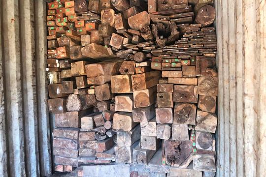 Bắt giữ vụ buôn lậu gỗ và đá quý với tổng trị giá 14 tỷ đồng