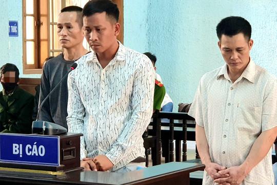 9 lần trộm hàng chục con bò, nhóm đối tượng lĩnh 29 năm tù