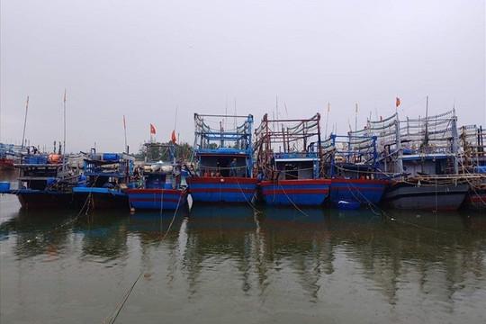 Thái Bình: Từ 9 giờ ngày 9/10 nghiêm cấm tàu, thuyền ra khơi