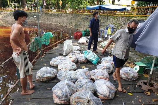 Hàng tấn cá chết trắng trong Công viên ở TPHCM